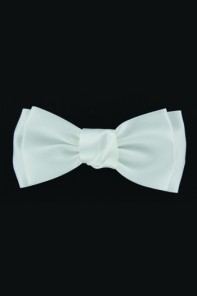 LUXERY SILK BOW CLIP